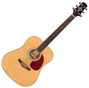 Ashton D24NT Acoustic Guitar