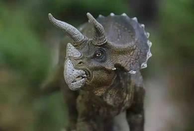 Papo Triceratops Jurassic world