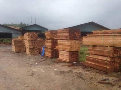 Kayu balak tanah Timberland land wood timber woods