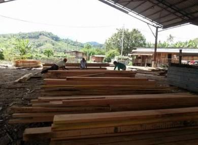 Kayu balak tanah Timberland land kilang wood woods
