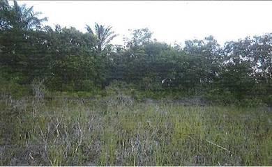 Vacant Detached Residential Land in Kuala Langat, Selangor