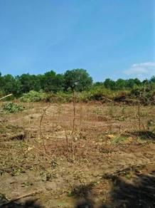 Tanah Lot Di Kg Kepala Gajah,Renek