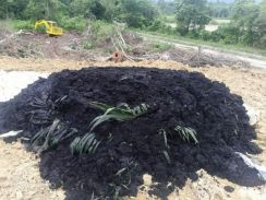 Tanah hitam sawit 25kg