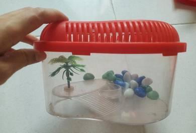 Akuarium ikan kecil atau rumah kura-kura kecil