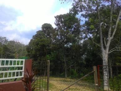 Tanah pertanian berdekatan bandar Tampin