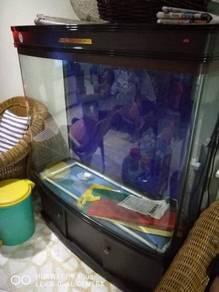 Big aquarium 5x5ft
