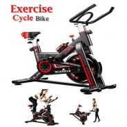 New exercise cycle bike sejian r5.3-3.se