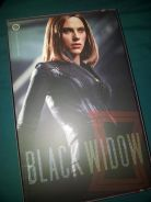 Hot Toys 1/6 Black Widow CAWS Version