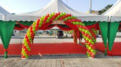 950) Wedding Arch Balloon Deco