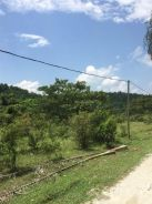 Kulim Sungai Ular Flat Land Future Development Kedah Good Investment