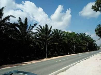 Main road prt masjid