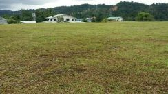 Roadside Land Pan Borneo Penampang