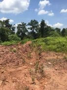 Kulim Hi Tech Industrial Land with Red Soil Kedah Road Access Good