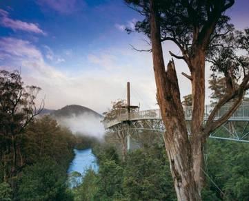 AMI Travel | Huon Valley Day Tours, Tasmania