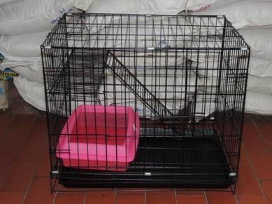 Sangkar Anak Kucing with plaform dan plaform