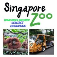 Singapore Zoo with Tram Rides