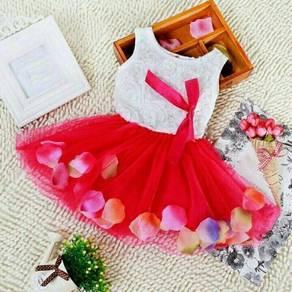 Dress baby lace