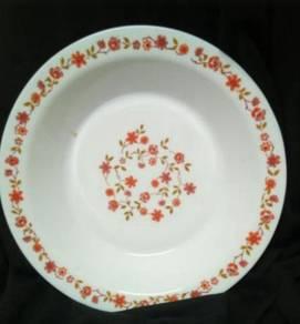 Arcoroc plate