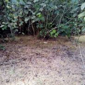 Tanah Untuk DIJUAL  - Kuala Pilah