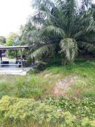 Land For Sale at Muar