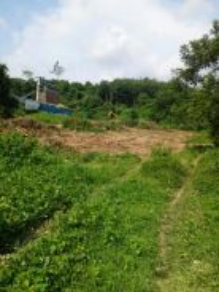 Tanah tepi jalan utama untuk dijual