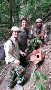 Royal Belum Rafflesia Visit