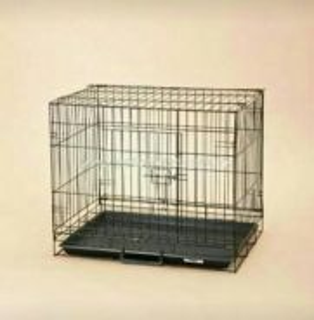 Sangkar kucing for sale.
