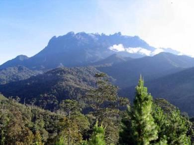 4D3N Kota Kinabalu Island & Wetland Adventure Tour
