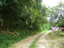 First Grade Contoured Land For Sale In Seberang Perai, Penang