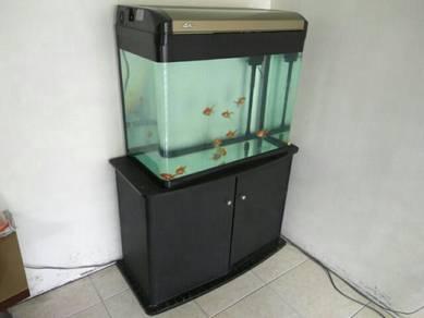 Completed aquarium with accessories