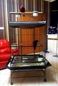 Big Parrot cage untuk Macaw.Grey