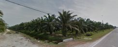 Future Development land For Sell