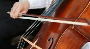 Violin cello lesson