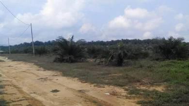 Tanah Lot Sawit Sungai Lembing Kuantan