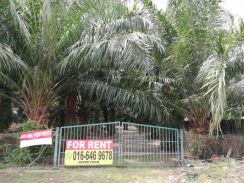 JENJAROM Agricultural Land For RENT
