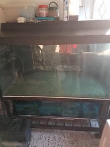 Fish tank 4'x2'