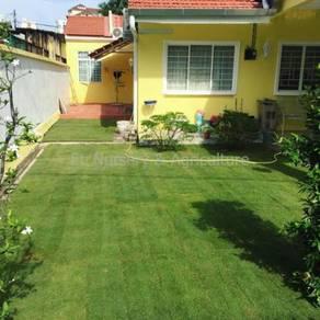 Philippine Grass (Zoysia Matrella) Supply & Works