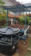 Set Mini Aquaponics Akuaponik for Home and School