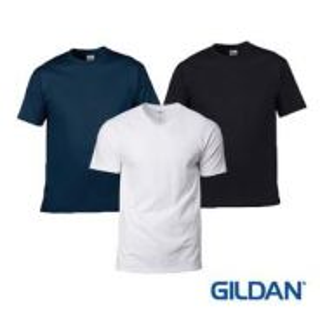 GM100 Gildan Softstyle Adult Shirt