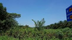 BM Machang bubok 4.24 Acres Agriculture Land