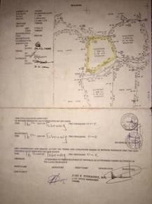 Tanah NT 3.33 ekar di Mangkalias Tenom