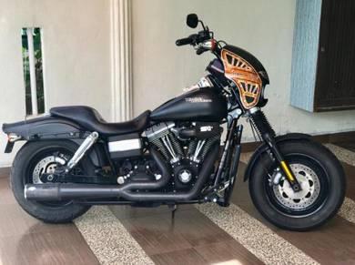 2010 Harley davidson (fat bob)