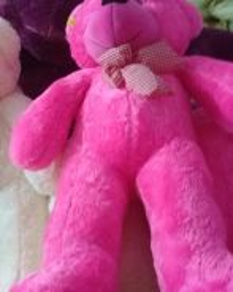 Teddy bear jika nak buat surpise
