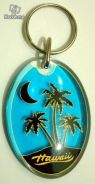 Hawaii Key Chain