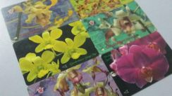 Singapore Old Phone Card 6 pcs ORCHID
