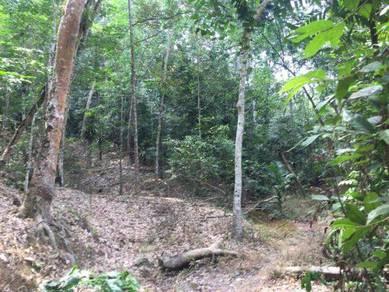 Bukit bentong agriculture land