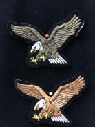 Flying eagle patch - series 2