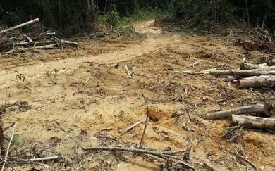 Tanah Ulu Yam Batang Kali untuk Dijual