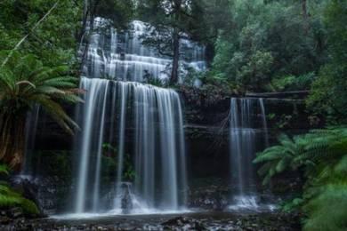 AMI Travel | Russell Falls Day Tours, Tasmania