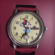 Hong kong disneyland watch